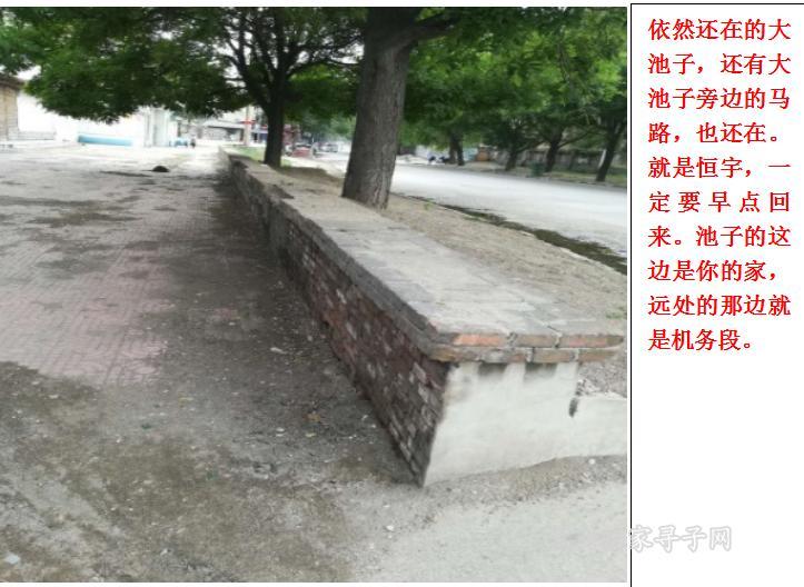 QQ图片20170628160519.png